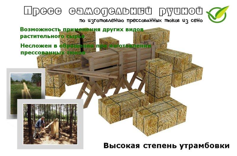 Схема питания елового леса фото 15