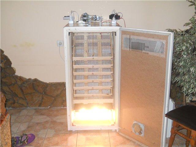 Как сделать инкубатор в домашних с холодильника